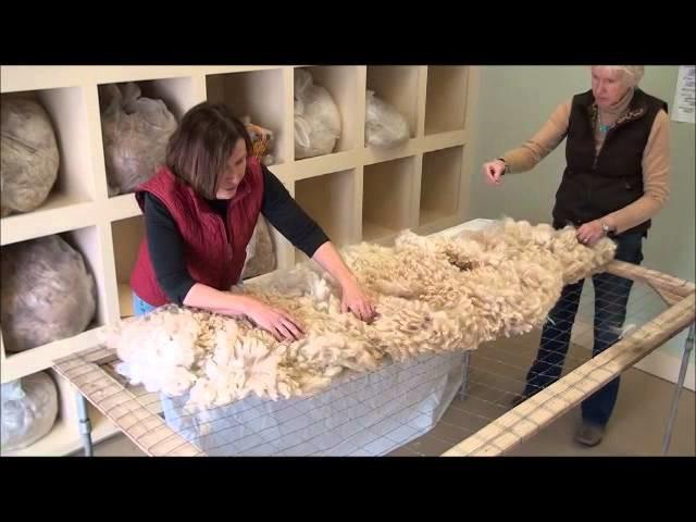How to Skirt an Alpaca Fleece
