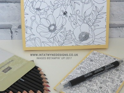Inside The Lines Colouring Gift Set Tutorial