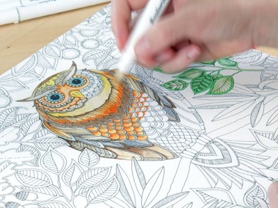Tutorial : Colouring Canvases!