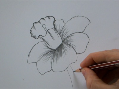 How To Draw a Flower step by step In 6 Minutes!