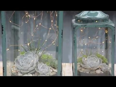 Make a Magic Succulent Lantern ✨ || West Coast Gardens