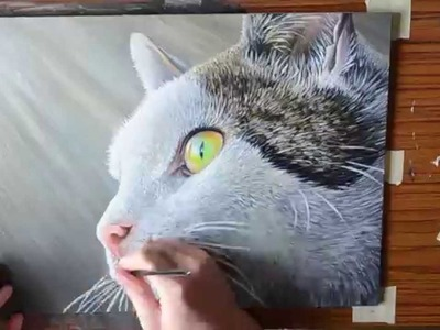 Acrylic Speed Painting Cat