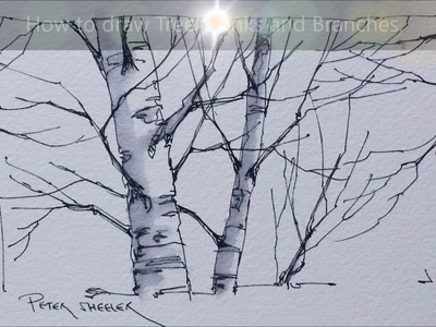 Tips and Techniques for drawing Better Tree trunks and Branches. Quick and Easy to Follow