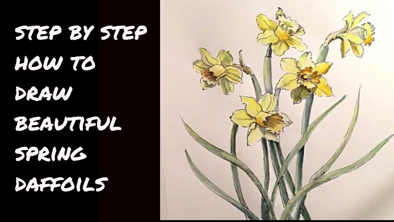 How to Draw a Dance of Daffodils at MIMI'S SKETCHBOOK