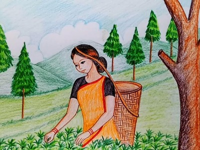 How to draw  scenery of tea garden step by step