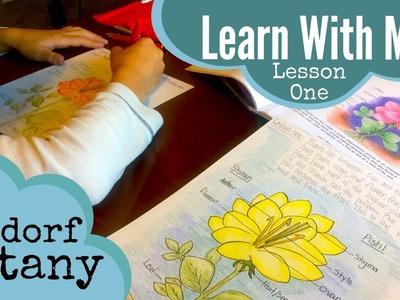 INSIDE A WALDORF MAIN LESSON | HOW TO HOMESCHOOL