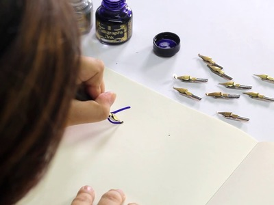 Calligraphy with Manuscript