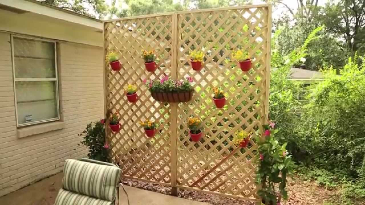 Create a Privacy Wall with Lattice and Decorative Plants