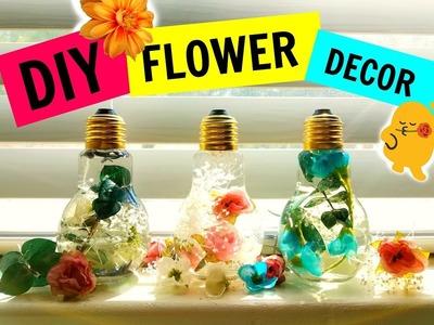 Flower Bulbs   DIY