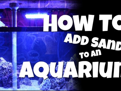 How to Add Sand to an Aquarium