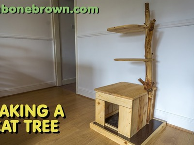 Making A Cat Tree (part 2 of 2)