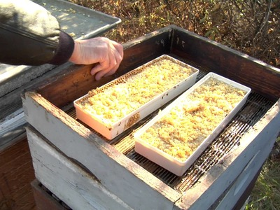 Winterizing Bee Hives Part 1 - Fall Feeding