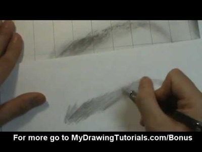 [Realistic Drawing Tutorial 5.8] Eyebrow Drawing - How To Draw Eyebrows