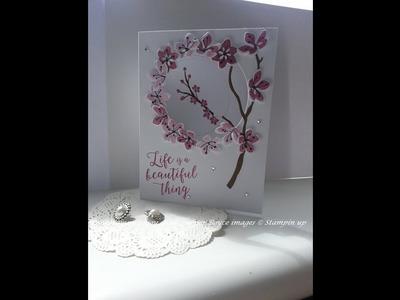 Aperture card  pt 1 using colorful seasons stampin up
