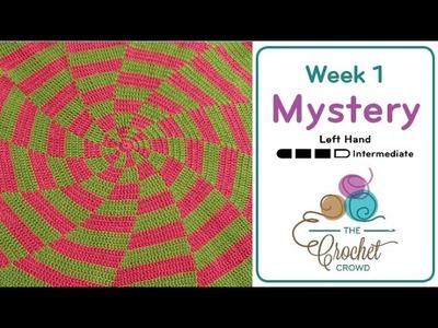 Crochet Mystery Afghan - Week 1