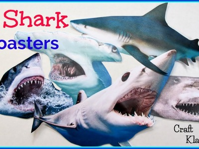 Easy Shark Trivia Coasters for Shark Week! ~ Another Coaster Friday ~ Craft Klatch