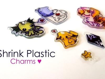 Watch me Craft ♥ DIY Shrink Plastic Charms