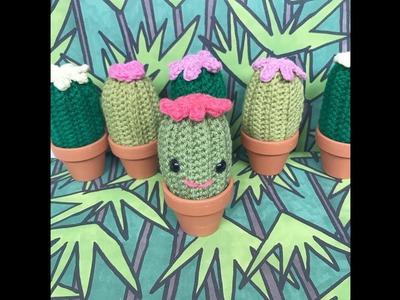 Crochet Cactus Tutorial Suitable for Beginners