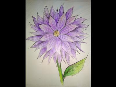 Dahlia|| how to draw a dahlia flower step by step|| flower|| very easy to draw dahlia|| flower