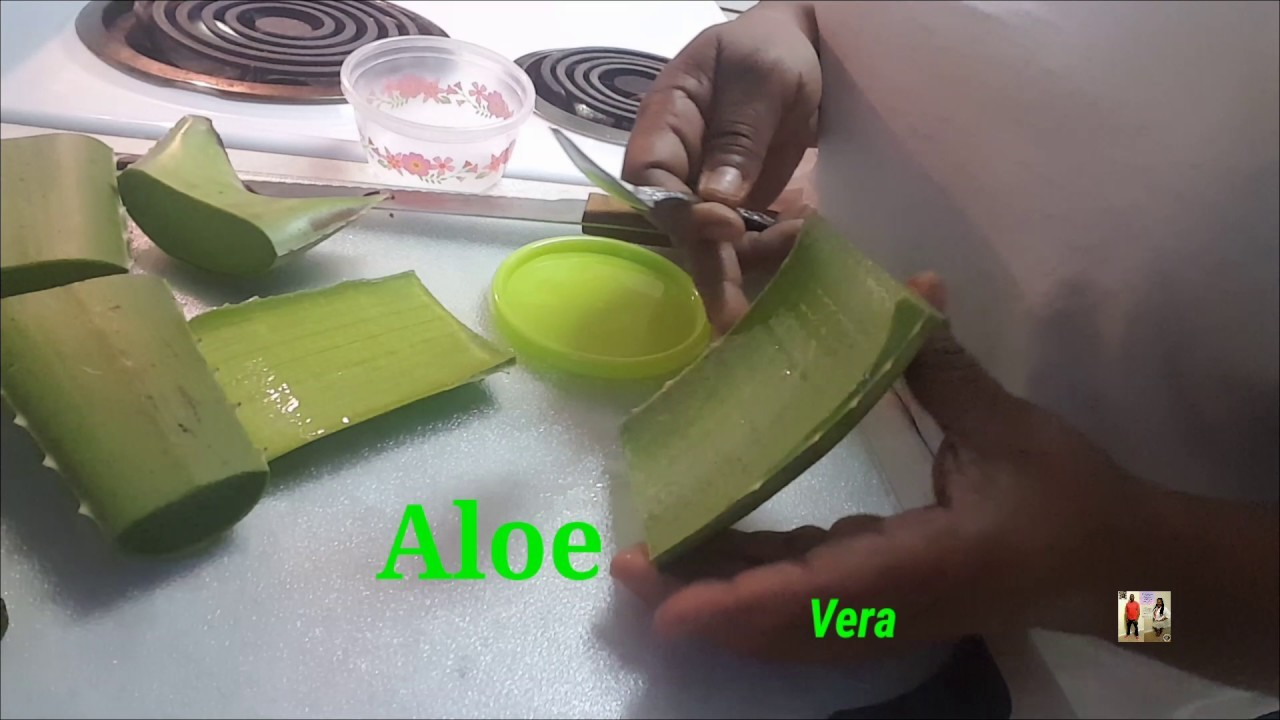 How to Cut and Store Aloe Vera   She Rubs Aloe Vera on her face