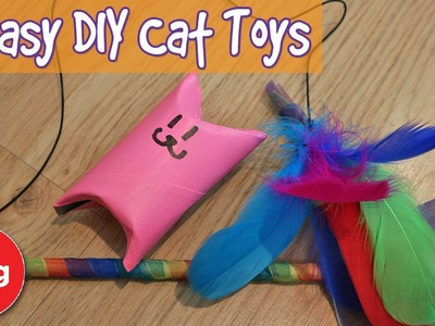 2 Easy DIY Cat Toys! How To Make Simple Cat Toys on a Budget + T-Shirt Competition Results!