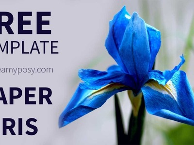 [FREE template and tutorial] How to make paper Iris flower from coffee filter