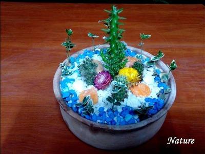 How to make a very small cactus garden