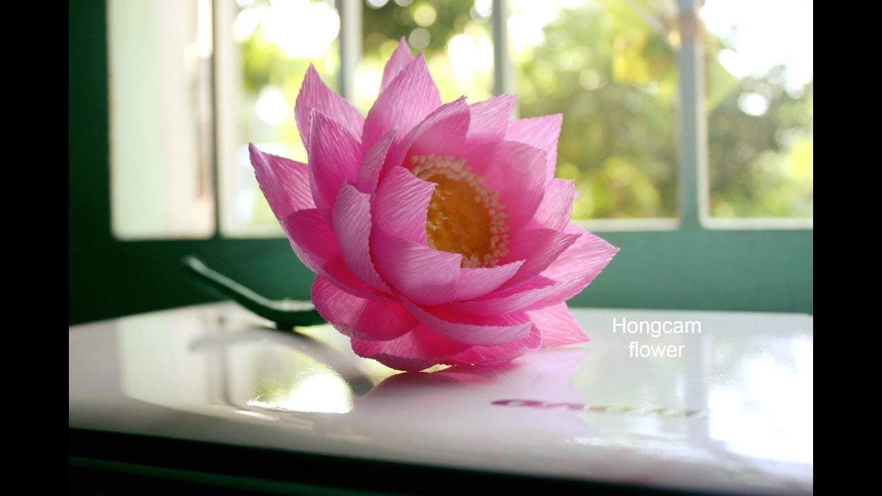 How to make lotus flower from crepe paper mightylinksfo