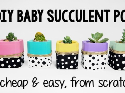 Tiny DIY SUCCULENT Pots from Scratch!  How to make tiny planters for Succulents and Cactus