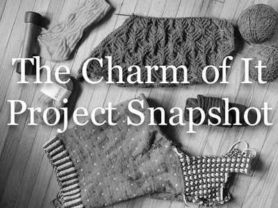 The Charm of It Knitting Podcast Episode 46: Project Snapshot of July 20th