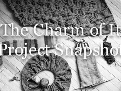 The Charm of It Knitting Podcast Episode 48: Project Snapshot of August 3rd