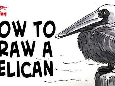 How to draw a pelican - greyscale illustration technique