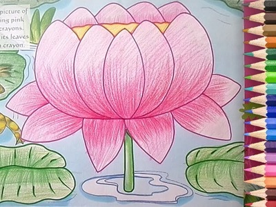 How to Draw and Coloring a Lotus in Easy Step by Step Method - Learn Drawing for Children
