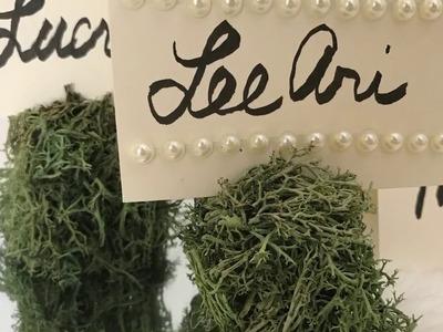 DIY Dollar Tree Moss Place Card Holders | DIY Wedding Reception Idea