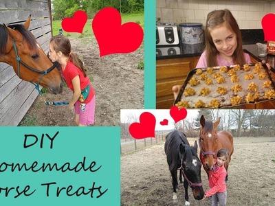 Homemade Horse Treats - DIY Homemade Horse Treat Recipe - Easy Horse Treat Recipe