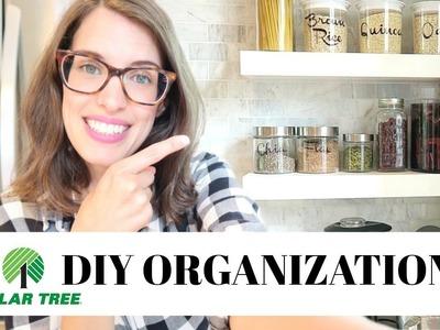 Dollar Tree DIY Pantry Organization   ORGANIZED SPACE