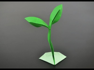 Origami Sprout. Little Plant - Instructions in English (BR)