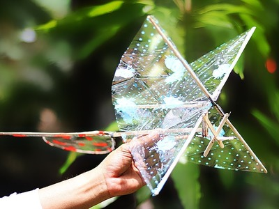DIY Rubber Band Ornithopter - How to Make a Rubber Band Ornithopter