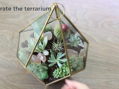 Easy to Make a Terrarium with Succulent Plants Tutorial
