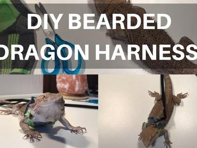 DIY Bearded Dragon.Small Pet Harness | BEARDED DRAGONS FIRST WALK!!