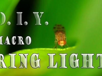 Easy Dirt Cheap D.I.Y. Macro Ring Light