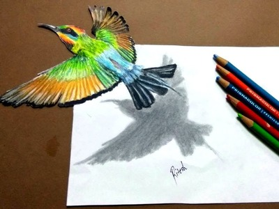 Cool 3D illusion art Tutorial | Drawing Flying Kingfisher - Slow speed | How to draw 3D kingfisher
