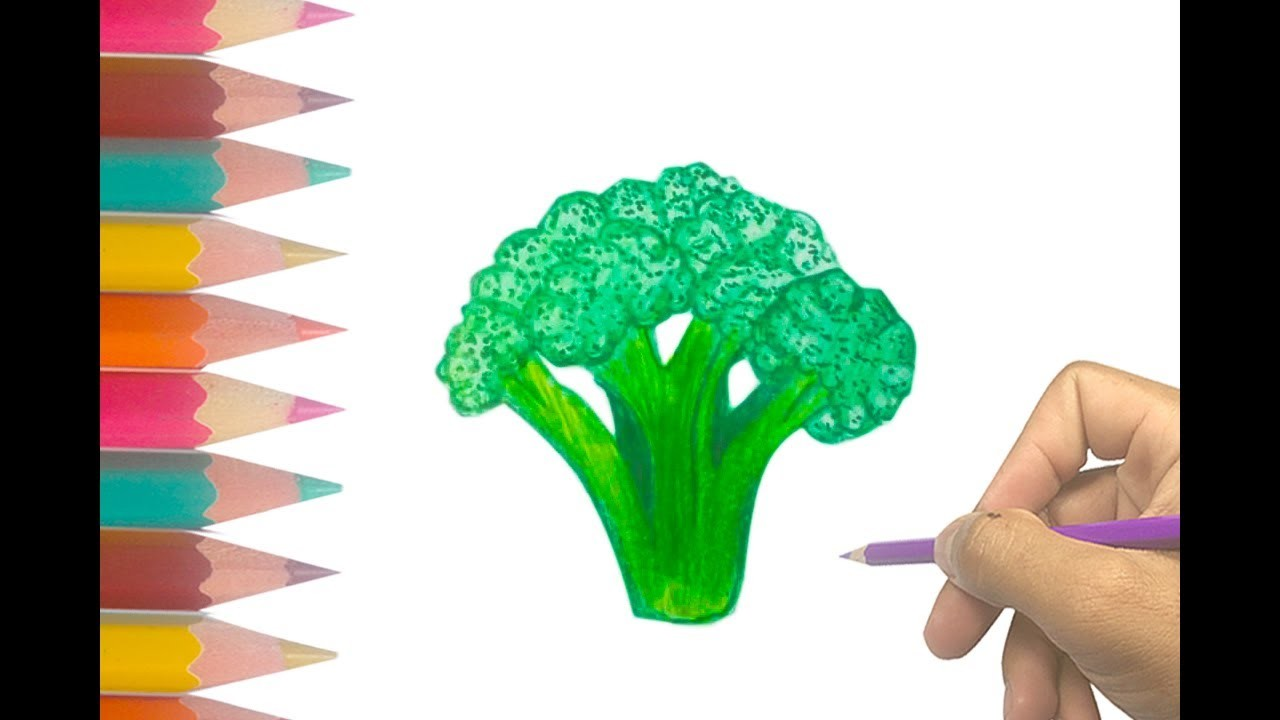 Easy Step By Step Vegetable Drawing For Kids How To Draw Broccoli