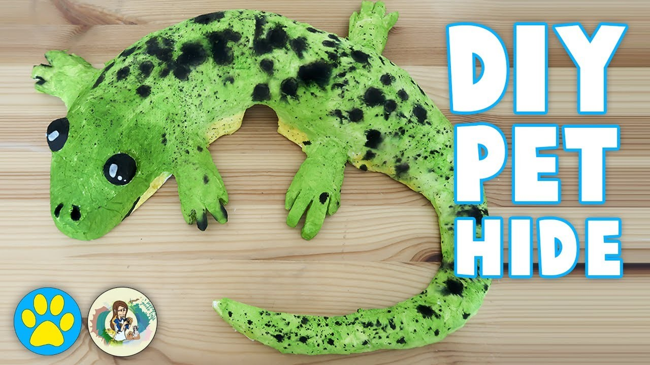Diy Lizard Shaped Hamster House Collab With Leopard Gecko