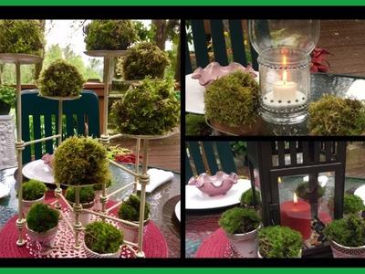 DIY- Three Outdoor Patio Centerpiece's- 80% dollar Tree Items