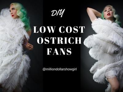 DIY Low cost  ostrich fan tutorial