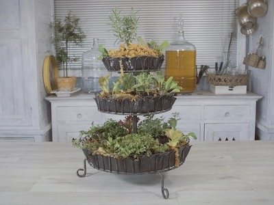 How to make a Countertop Herb Garden for your Kitchen