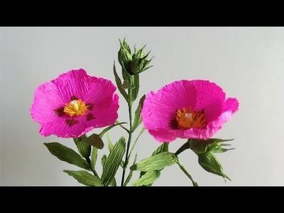 ABC TV | How To Make Cistus Purpureus Paper Flower From Crepe Paper - Craft Tutorial