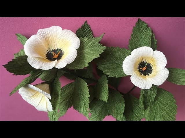 ABC TV | How To Make White Alder (Turnera subulata) Paper Flower From Crepe Paper - Craft Tutorial