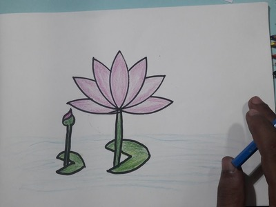 How to Draw Water Lily Step by Step ❀ Water Lily Drawing || Avro Drawing School
